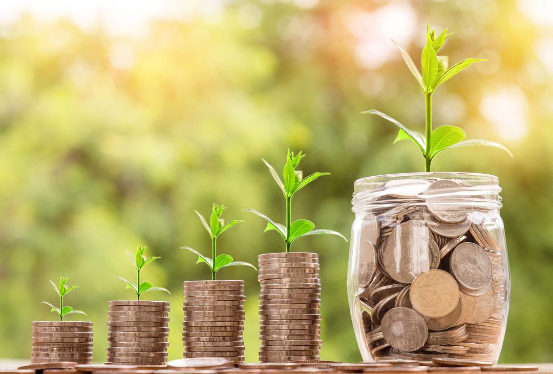 planta monedas sostenibilidad